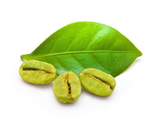 Extrakt aus Grüner Kaffee Bohnen - hilft beim Abnehmen