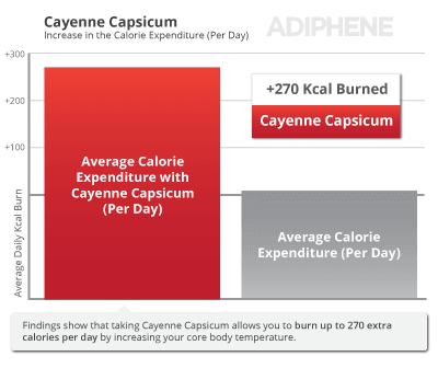Capsicum Fettverbrennung