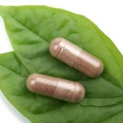 Grüner Tee Extrakt Kapseln